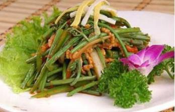 来长白山春食山野菜 品尝春天里的美味